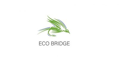 eco bridge 400